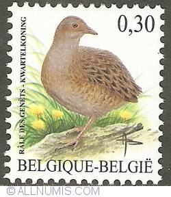 Image #1 of 0,30 Euro 2006 - Corn Crake