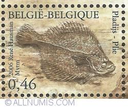 Image #1 of 0,46 Euro 2006 - Fish of the North Sea - European Plaice