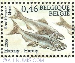 Image #1 of 0,46 Euro 2006 - Fish of the North Sea - Herring