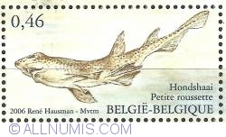 Image #1 of 0,46 Euro 2006 - Fish of the North Sea - Small-spotted Catshark