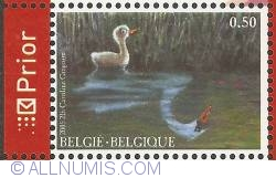 0,50 Euro 2005 - 200th Anniversary of H. C. Andersen - The Ugly Duckling