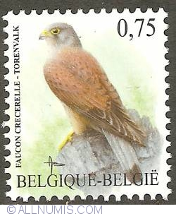 Image #1 of 0,75 Euro 2007 - Common Kestrel