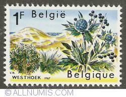 Image #1 of 1 Franc 1967 - Plants of the Westhoek (Coast region)