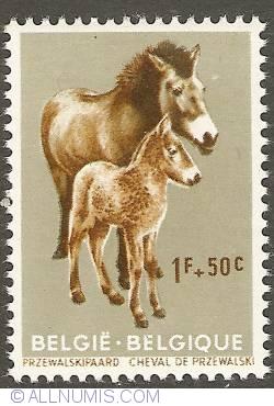 Image #1 of 1 Franc + 50 Centimes 1961 - Przewalski Horse