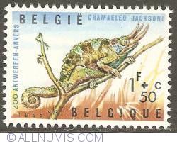 Image #1 of 1 Franc + 50 Centimes 1965 - Jackson's Chameleon