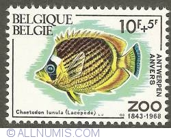 Imaginea #1 a 10 + 5 Francs 1968