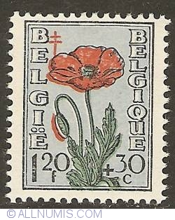 Image #1 of 1,20 Francs + 30 Centimes 1949 - Poppy