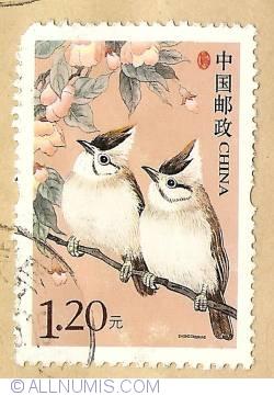 Image #1 of 1,20 Yuan 2006 - Yuhinnae bruneiceps
