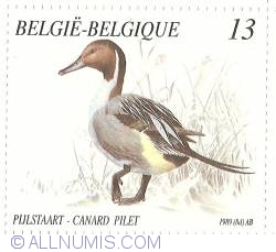 Image #1 of 13 Francs 1989 - Northern Pintail