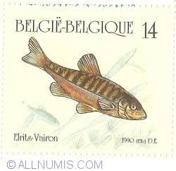 Imaginea #1 a 14 Francs 1990 - Minnow