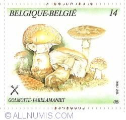 Image #1 of 14 Francs 1991 - Blusher