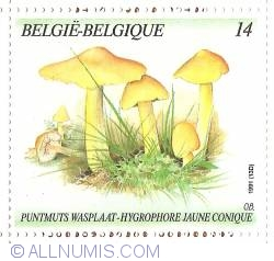 Image #1 of 14 Francs 1991 - Hygrocybe Persistens