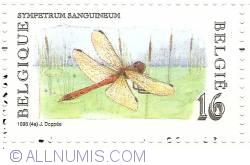 Image #1 of 16 Francs 1996 - Sympetrum Sanguineum