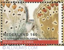 160 Cent 1993 - Common Blue (Icarusblauwtje)