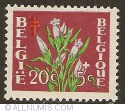 Image #1 of 20 + 5 Centimes 1950 - Gentiana