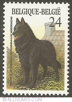 Image #1 of 24 Francs 1986 - Belgian Sheperd Dog (Groenendael)