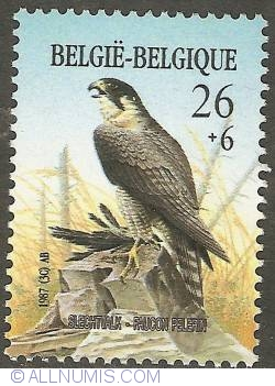 Image #1 of 26 + 6 Francs 1987 - Peregrine Falcon