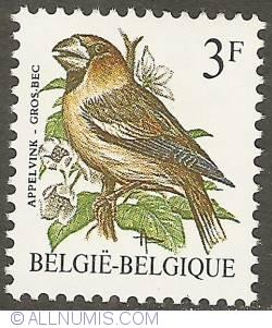 Image #1 of 3 Francs 1985 - Appelvink-Gros Bec