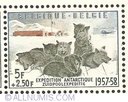 Imaginea #1 a 5 + 2,50 Francs - Antarctic Expedition 1957-1958 - Sledge dogs