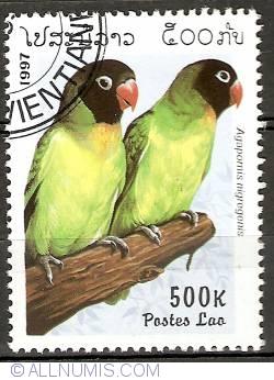 Image #1 of 500 Kip 1997 - Parrots