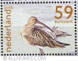 Image #1 of 59 Euro Cent 2003 - Curlew