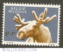 Image #1 of 6 + 2 Francs 1961 - Moose
