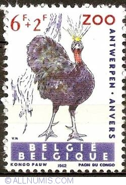 Image #1 of 6+2 Francs 1962 - Congo Peafowl