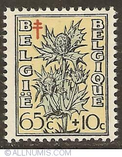 Image #1 of 65 + 10 Centimes 1949 - Eryngium