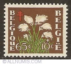 Image #1 of 65 + 10 Centimes 1950 - Eriophorum