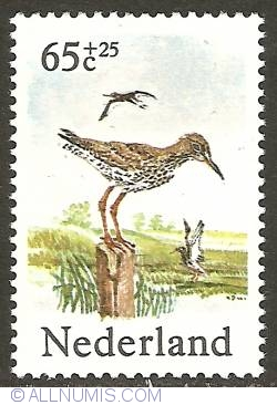 Image #1 of 65 + 25 Cent 1984 - Common Redshank