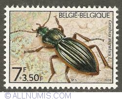 Image #1 of 7 + 3,50 Francs 1974 - Carabus