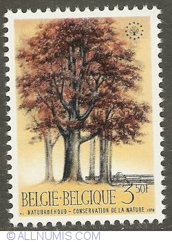 Image #1 of 7 Francs 1970 - Birch