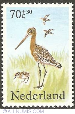 Image #1 of 70 + 30 Cent 1984 - Black-tailed Godwit