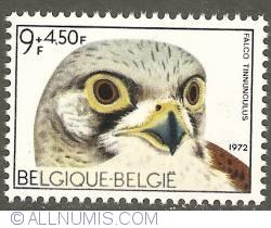 Image #1 of 9 + 4,50 Francs 1972 - Common Kestrel