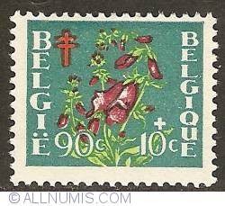 Image #1 of 90 + 10 Centimes 1950 - Digitalis Purpurea