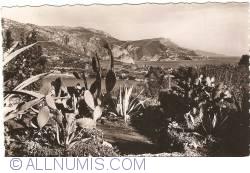 Nice - Le Plateau du Mont Boron (1952)