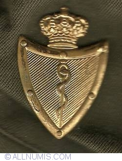 Imaginea #1 a Belgian Forces Medical Services - Officer's Pin