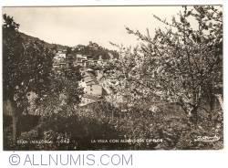 Image #1 of Deya (Mallorca) - Village with flourishing flmond trees (1961)