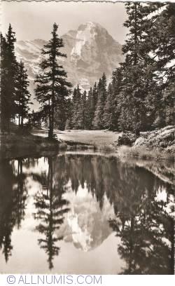 Image #1 of Grindelwald