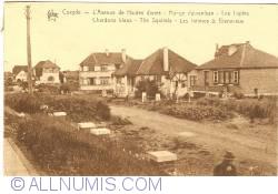 """Image #1 of Koksijde - Avenue de Hautes Dunes - Villas """"Les Lupins"""", """"Chardons Bleu"""", """"The Squirrels"""", """"Les Intimes"""" and """"Bienvenue"""""""