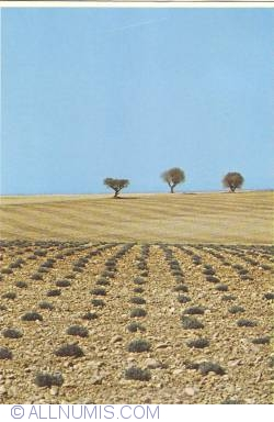 """Image #1 of """"Paysage"""" - Landscape (1983)"""