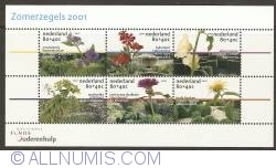 Image #1 of Summer Stamps Souvenir Sheet 2001