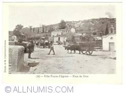 Imaginea #1 a Vila Pouca de Aguiar - Poça da Cruz (1908)