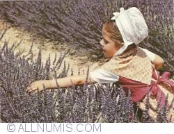 Imaginea #1 a Tânără în Provence (1979)