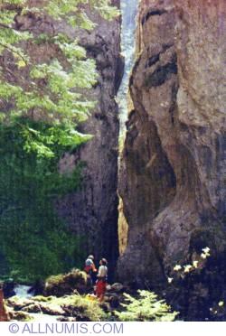 Image #1 of Cheile Cheii Dâmbovicioara cave complex