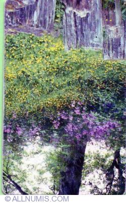 Primăvara (2)